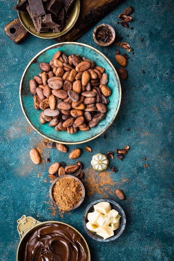 cacao Fave di cacao, bei pezzi scuri del cioccolato amaro, burro del cacao e cacao in polvere immagini stock