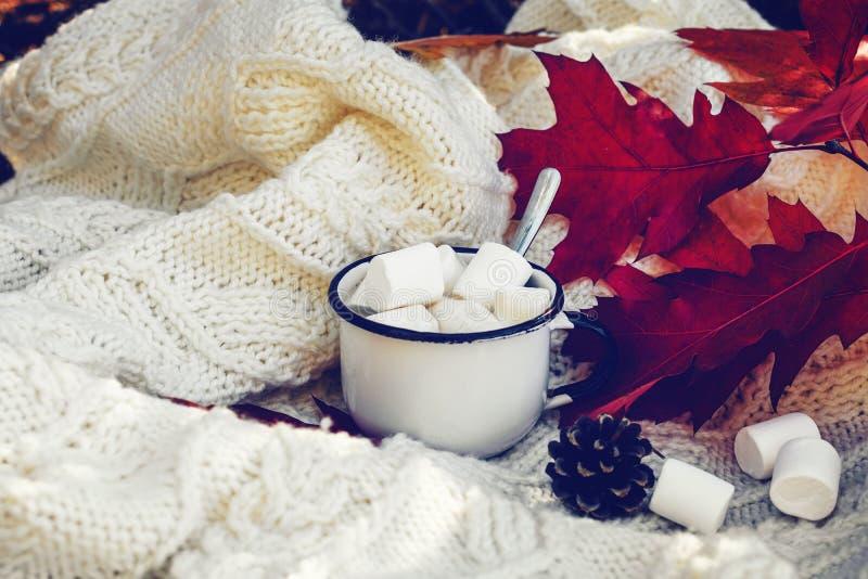 Cacao met marshmallows, herfsttijd royalty-vrije stock foto