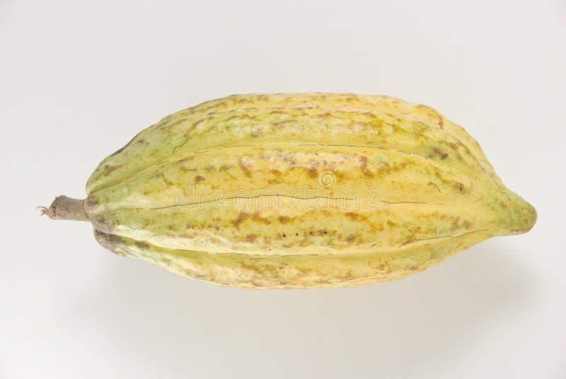 cacao owoców obrazy stock