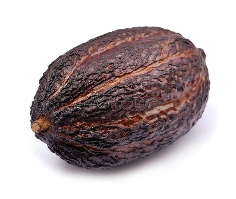 Cacao-peul geïsoleerd royalty-vrije stock afbeeldingen
