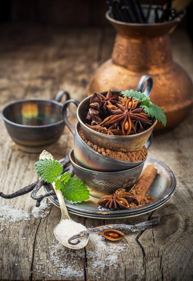 Cacao in polvere, anice, zucchero, baccelli della vaniglia dentro fotografie stock