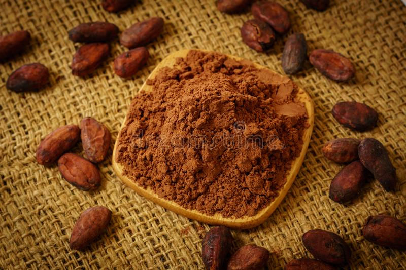 Cacao powder and cocoa beans on burlap. Background stock photo