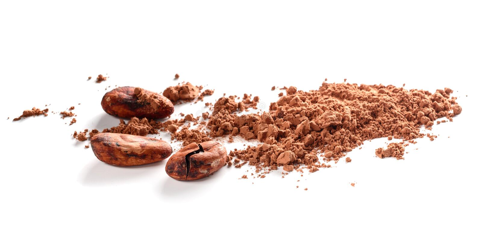 Cacao powder and cocoa beans isolated on white. Background royalty free stock photos