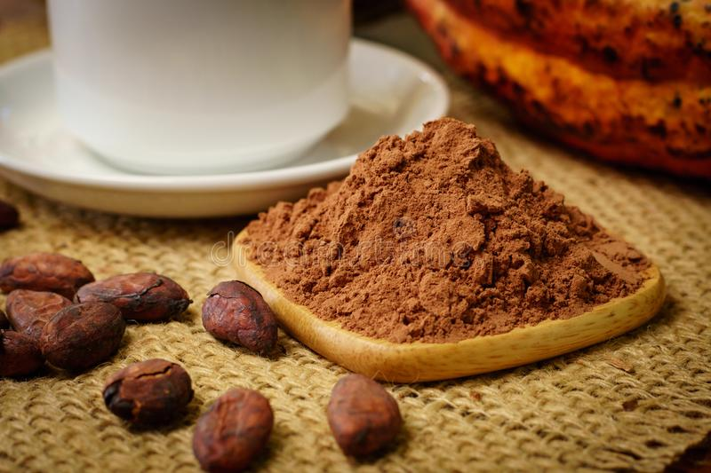 Cacao powder near white cup, raw cocoa fruit, cacao beans. On table royalty free stock photos