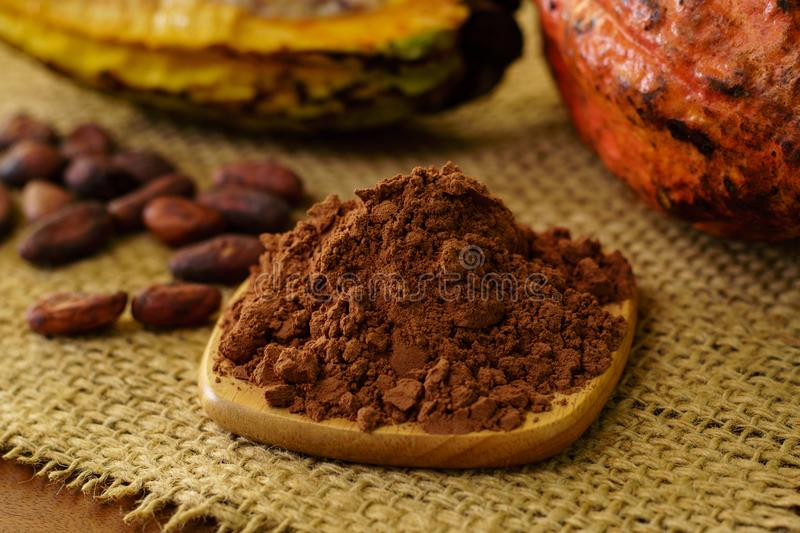 Cacao powder and raw cocoa fruit, cacao beans on background. Cacao powder and raw cocoa pod fruit, cacao beans on background stock photo