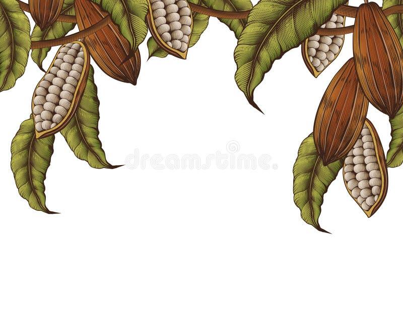 Cacao roślina dekorująca rama ilustracji
