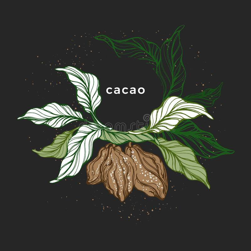 Cacao wreath. Natural chocolate. Vector template royalty free illustration
