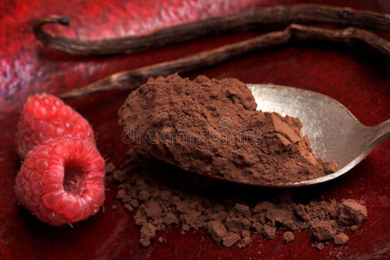 Cacao y vainilla foto de archivo