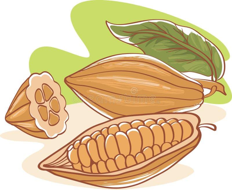 Cacaobonen vector illustratie