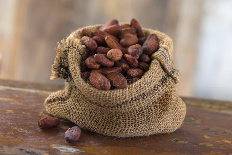 Cacaobonen binnen van een Jutezak stock afbeelding
