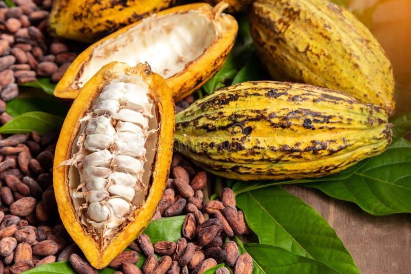 Cacaobonen en cacaopeul op een houten oppervlakte stock fotografie