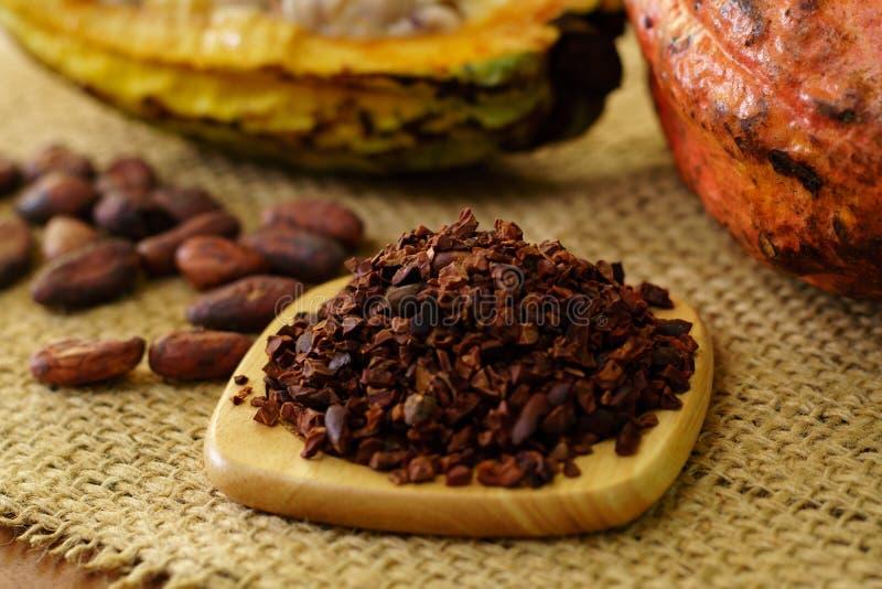 Cacaobonen en ruw cacaofruit, cacaobonen op achtergrond royalty-vrije stock fotografie