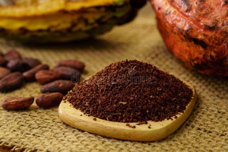 Cacaobonen en ruw cacaofruit, cacaobonen op achtergrond royalty-vrije stock foto