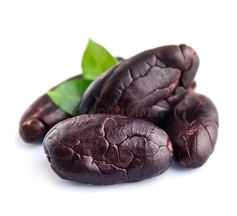 Cacaobonen met bladeren stock foto's