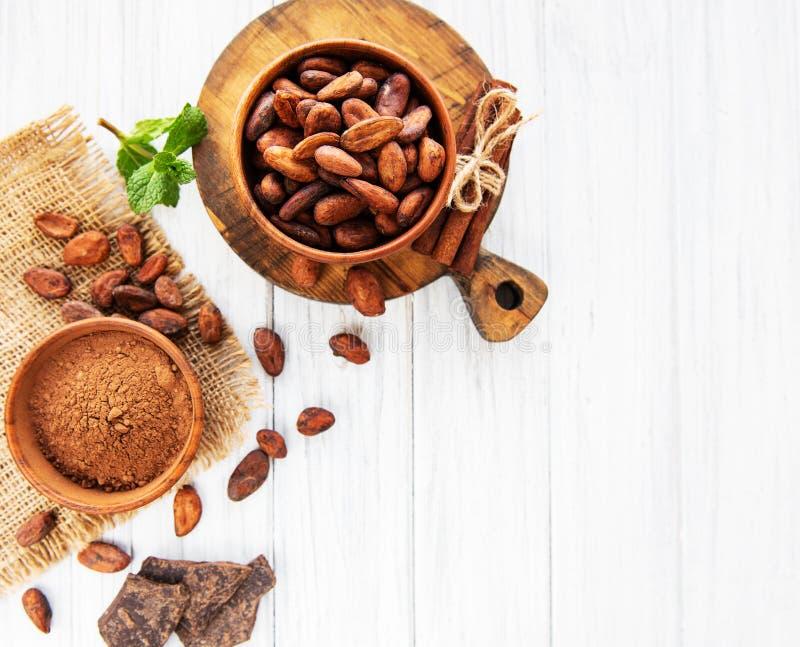 Cacaobonen, poeder en chocolade royalty-vrije stock fotografie