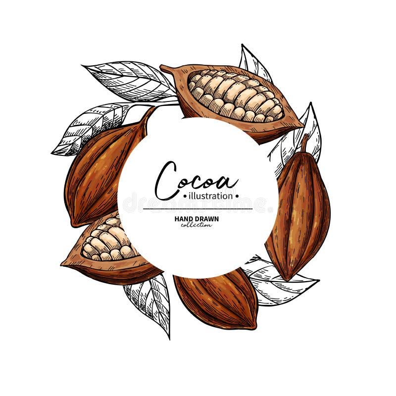Cacaokader Het vectormalplaatje van de superfoodtekening Fruit, blad en boongravure Organisch gezond voedsel royalty-vrije illustratie