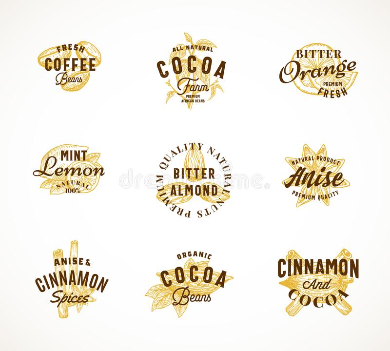 Cacaokruiden en Koffie Abstract Vectorteken, Symbool of Logo Templates Set Hand Getrokken Bonen en Kruid met Premie stock illustratie