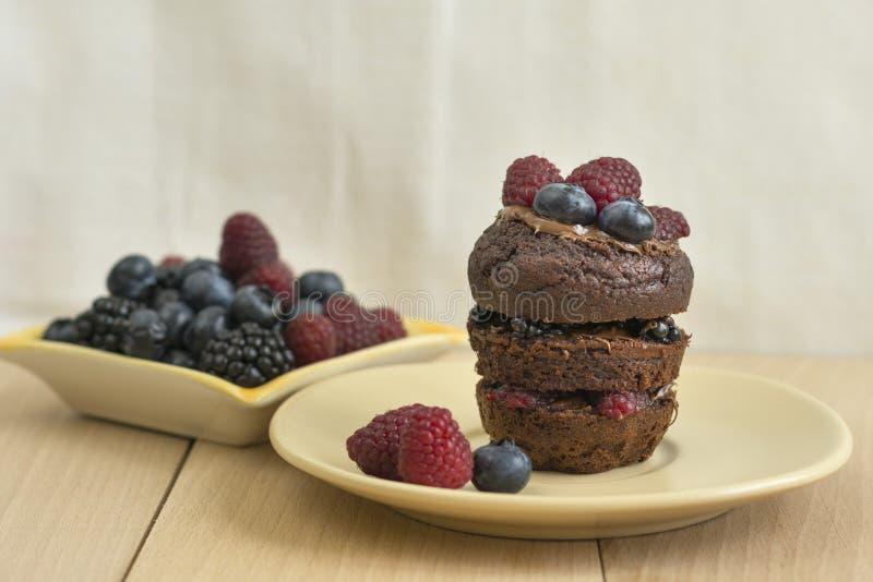 Cacaomuffins met verse bessen royalty-vrije stock foto
