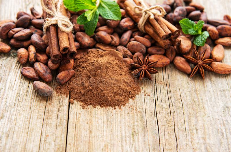 Cacaopoeder en bonen royalty-vrije stock foto's