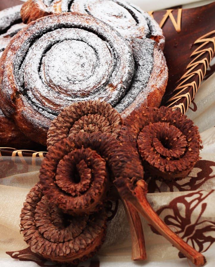 Cacaoslak royalty-vrije stock foto's