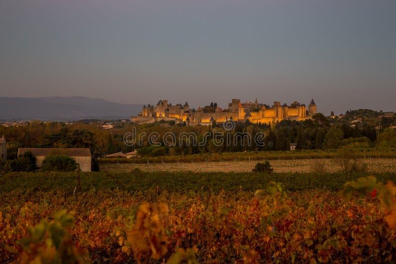 Cacassonne wina jard w półmroku obrazy royalty free