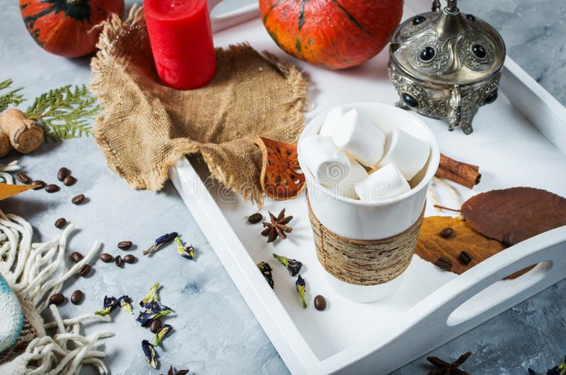 Cacau caseiro com marshmallows, especiarias e abóbora, do outono vida acolhedor ainda, conceito do humor do outono, decoração saz foto de stock royalty free