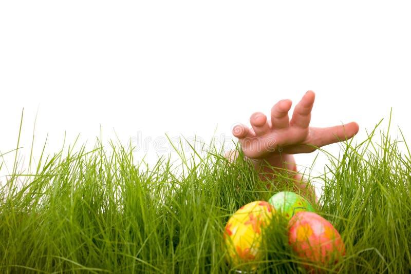 Caccia dell'uovo di Pasqua immagine stock libera da diritti