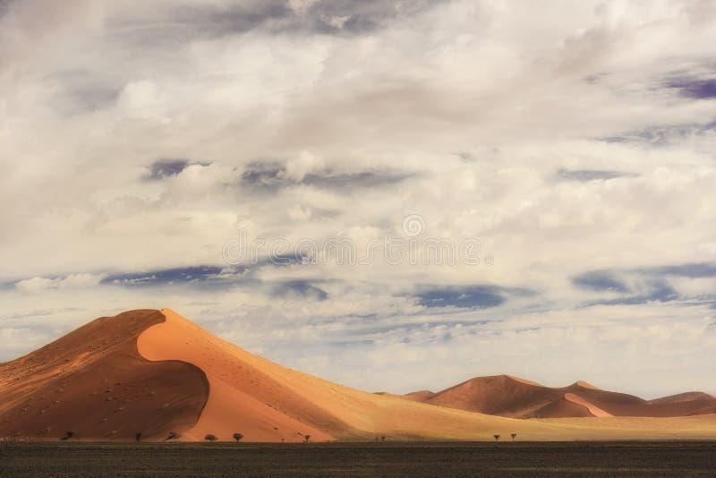 Cacerola de la sal de Sossusvlei fotos de archivo