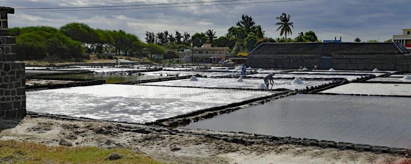 Cacerolas de la sal del Tamarin mauritius imágenes de archivo libres de regalías