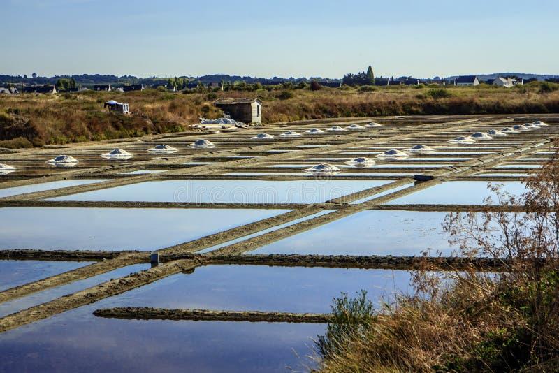 Cacerolas de la sal, Guérande, el Loira-Atlantique, Francia foto de archivo libre de regalías