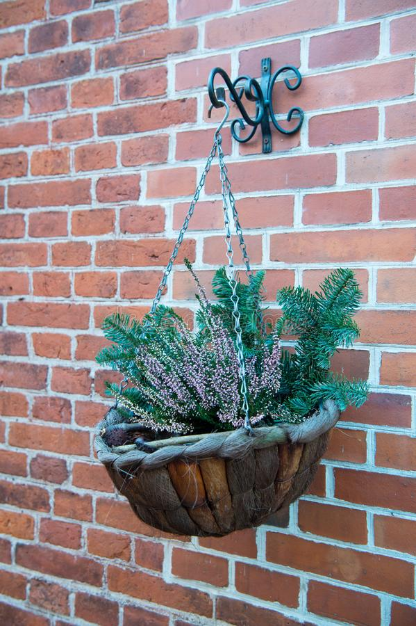 Free Cachepot Or Flowerpot On Red Brick Wall Stock Image - 101549271