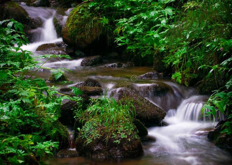 Cachoeira Áustria imagens de stock