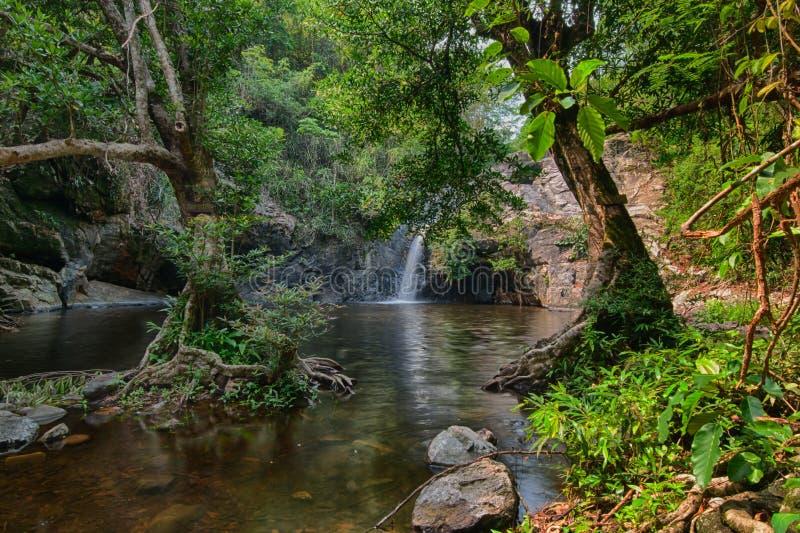 Cachoeira fotos de stock royalty free