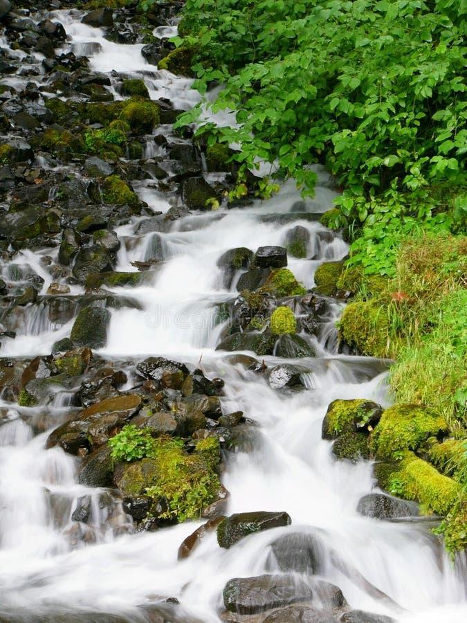 Download Cachoeira foto de stock. Imagem de queda, creek, fluxo, córrego - 62200