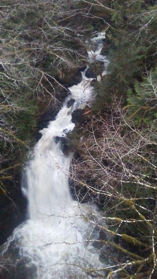 Cachoeira imagem de stock royalty free