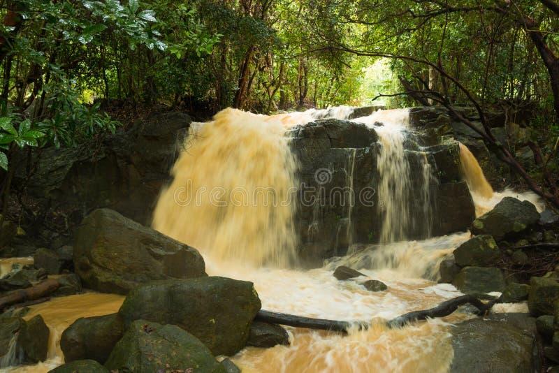 Cachoeira afluente na estação da chuva na ilha Koh Samui, Tailândia imagens de stock