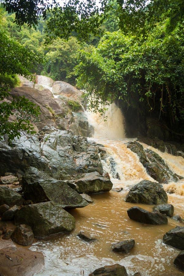 Cachoeira afluente na estação da chuva na ilha Koh Samui, Tailândia fotos de stock royalty free