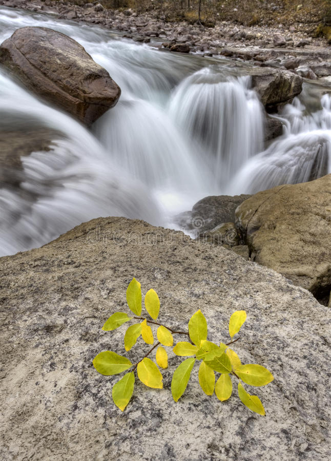 Cachoeira Alberta Canadá de Sunwapta fotografia de stock royalty free