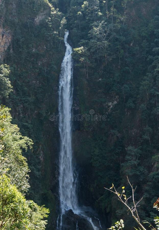 Cachoeira alta do penhasco fotografia de stock royalty free