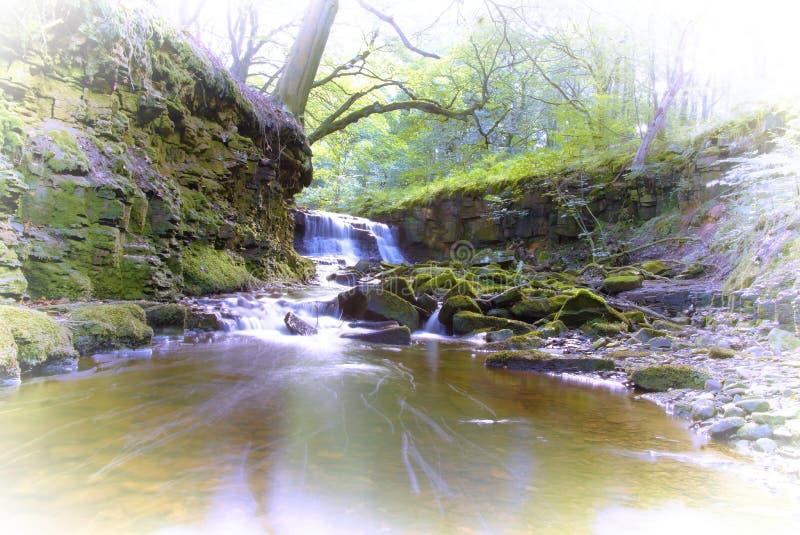 Cachoeira após a chuva fotos de stock