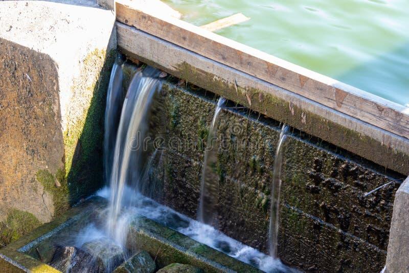 Cachoeira artificial pequena A água da lagoa derrama através das placas de madeira nas pedras fotos de stock royalty free