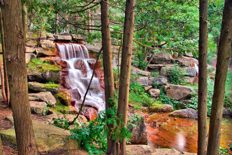 Cachoeira através das árvores fotos de stock