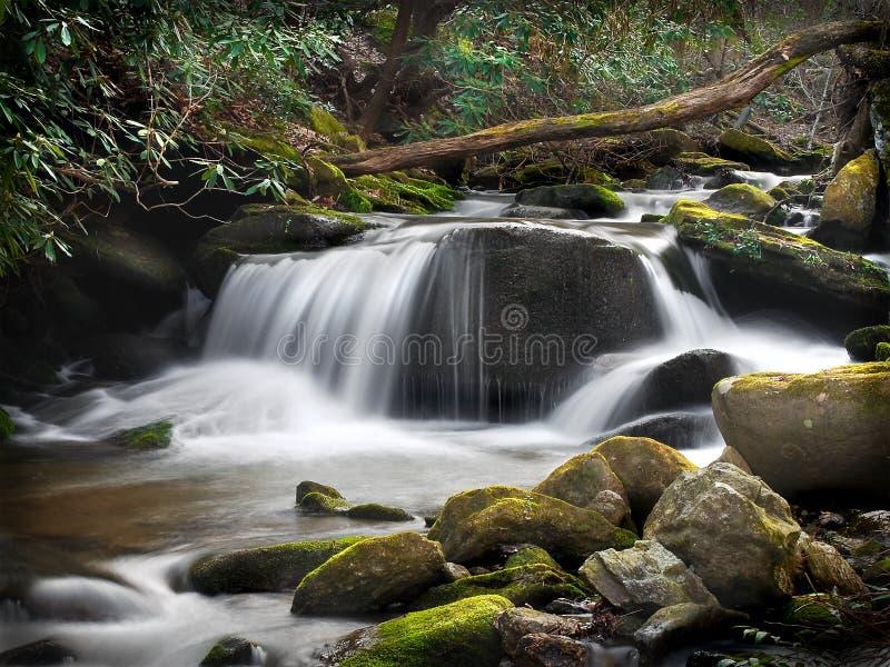 Cachoeira azul da floresta de Ridge com água leitosa fotos de stock