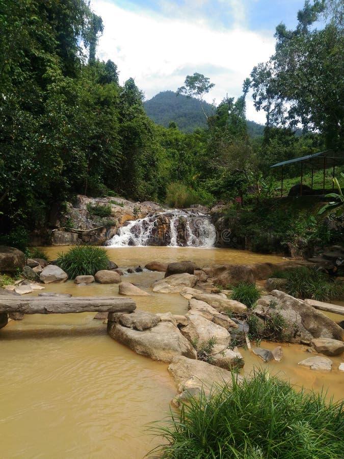 Cachoeira, baía nova, água, vistas, Vietname, Nha Trang, amarelo, natureza, trópicos, flora, ecologia, exótica, hortaliças, turis fotografia de stock royalty free