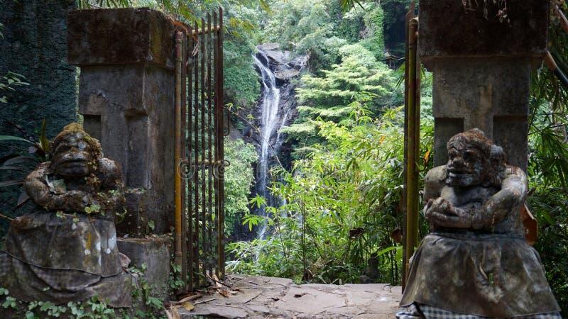 Cachoeira bali de Munduk foto de stock royalty free