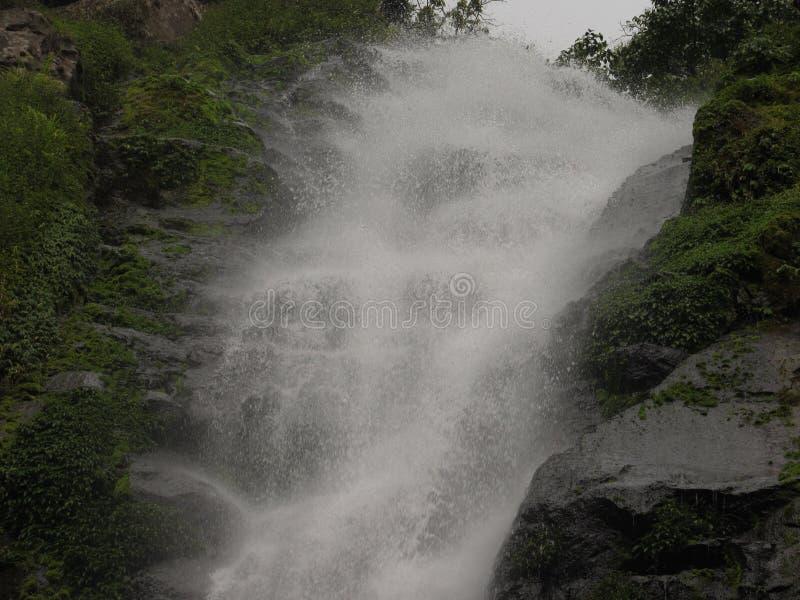 Cachoeira a beleza do encanto natural fotos de stock royalty free