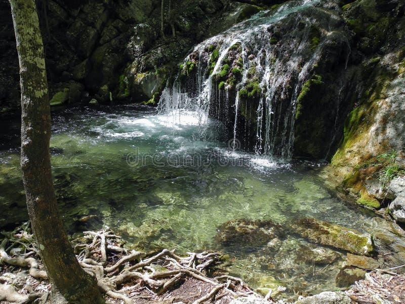 Cachoeira bonita com a associação natural no rio de conexão em cascata exótico da floresta do mountin em montanhas crimeanas na m foto de stock royalty free