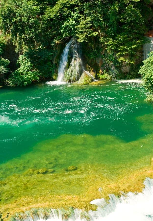 Cachoeira bonita da floresta