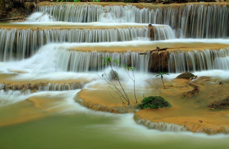 A cachoeira bonita da floresta profunda, Tailândia fotografia de stock