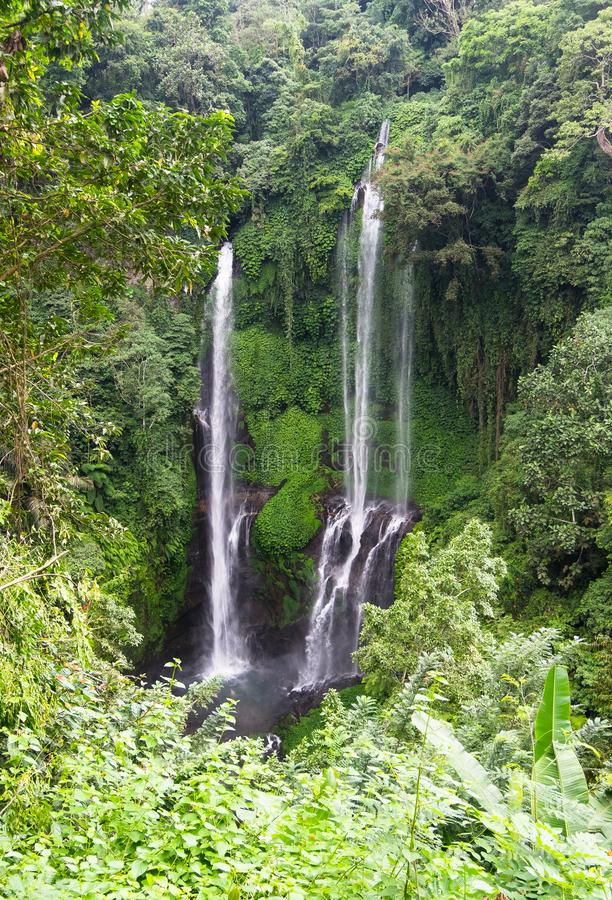 Cachoeira bonita de Sekumpul - Bali, Indonésia imagens de stock royalty free